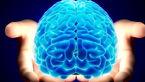 با عملکرد مغز انسان بیشتر آشنا شوید