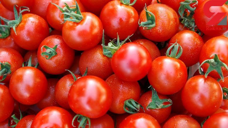 قیمت گوجه فرنگی 1000 تومان ارزان شد